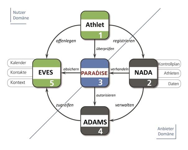 paradise-infografik